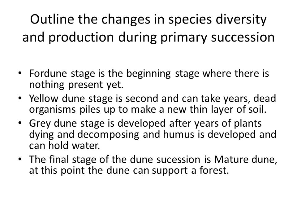 Outline the changes in species diversity and production during primary succession