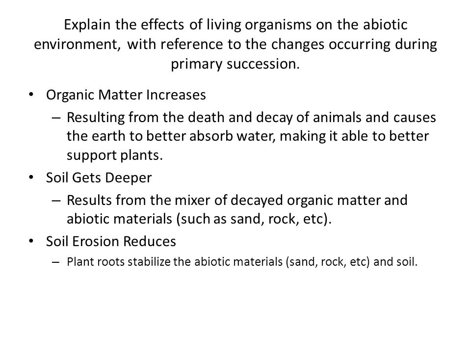 Explain the effects of living organisms on the abiotic environment, with reference to the changes occurring during primary succession.