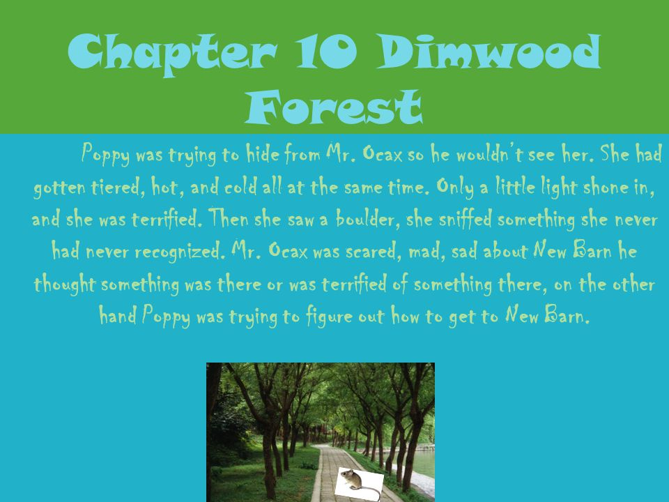Chapter 10 Dimwood Forest
