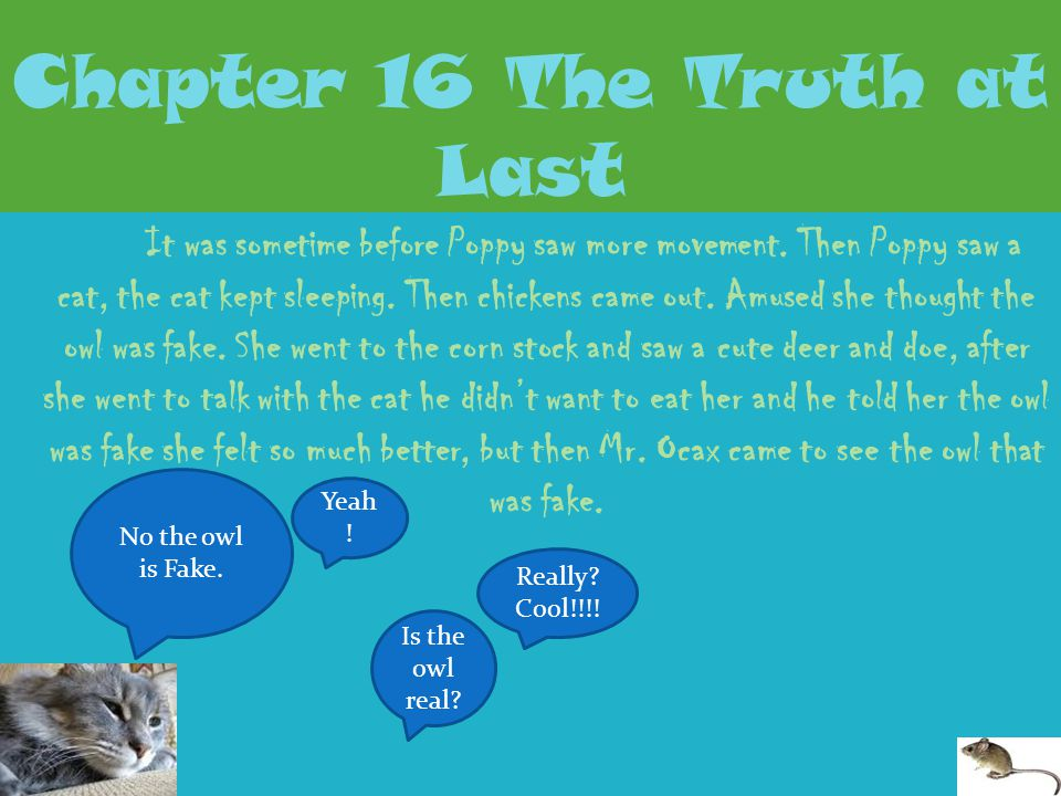 Chapter 16 The Truth at Last