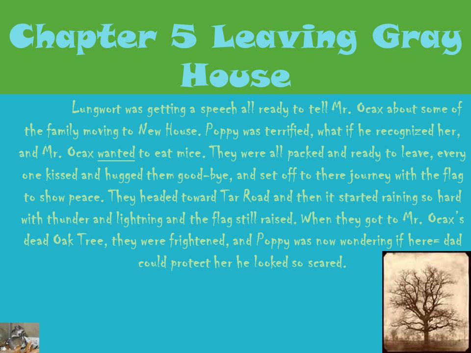 Chapter 5 Leaving Gray House