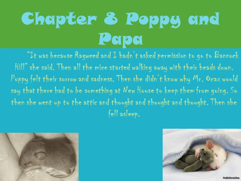 Chapter 8 Poppy and Papa