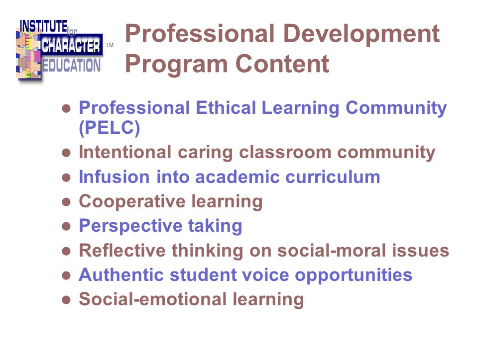 Professional Development Program Content