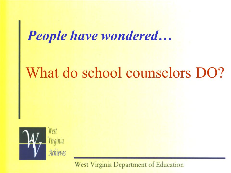 What do school counselors DO