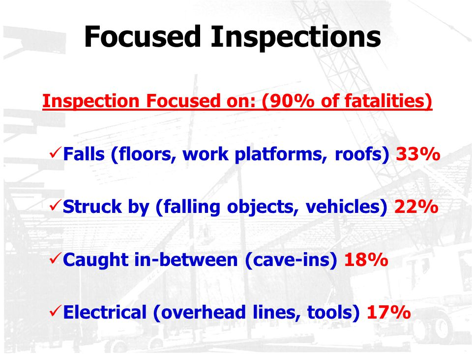 Focused Inspections Falls (floors, work platforms, roofs) 33%
