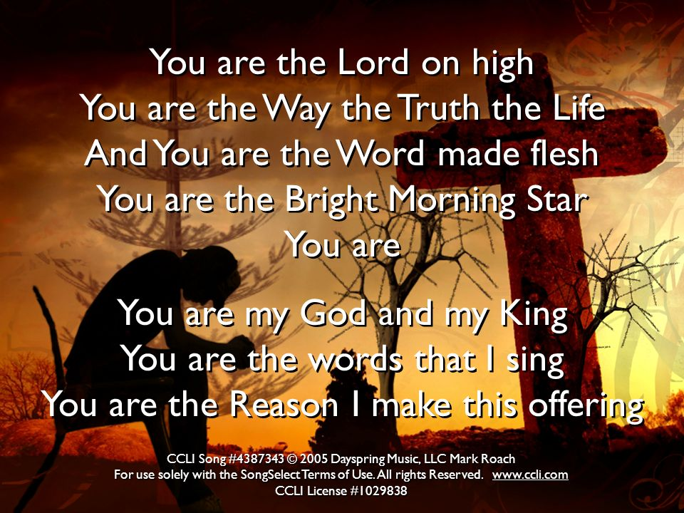 You are the Lord on high You are the Way the Truth the Life And You are the Word made flesh You are the Bright Morning Star You are