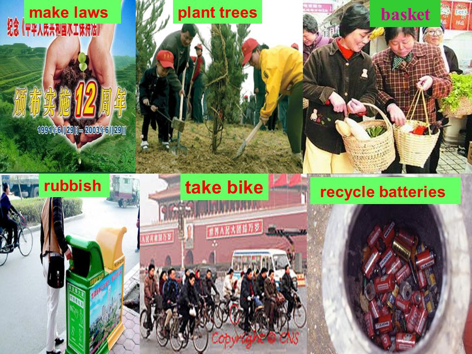 make laws plant trees basket rubbish take bike recycle batteries