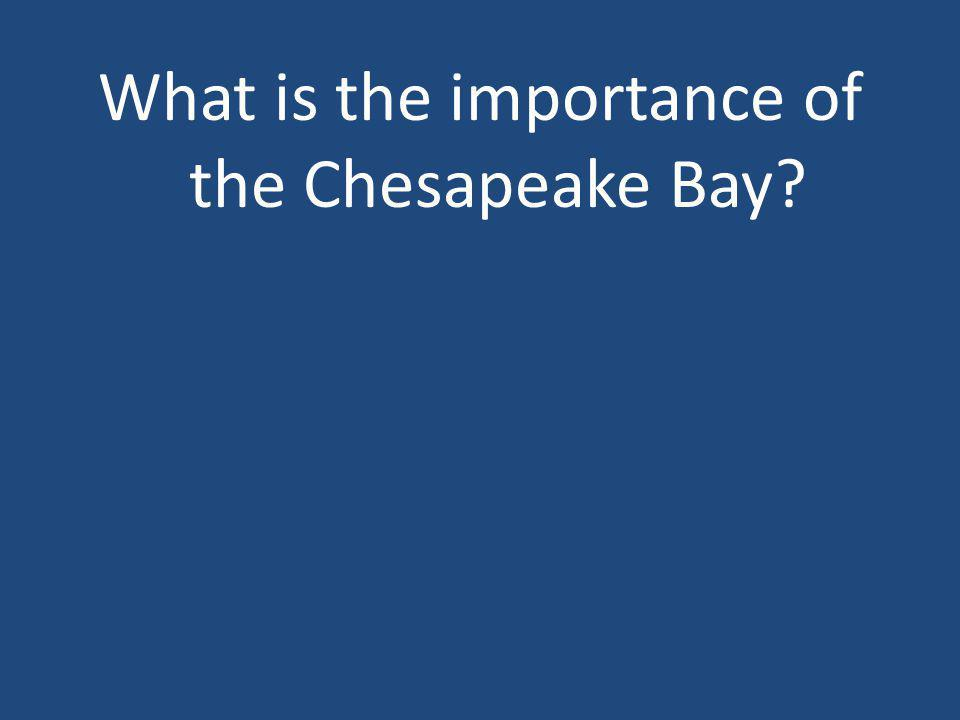 What is the importance of the Chesapeake Bay