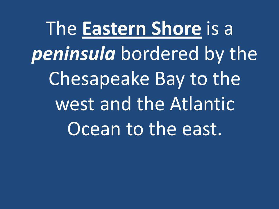 The Eastern Shore is a peninsula bordered by the Chesapeake Bay to the west and the Atlantic Ocean to the east.