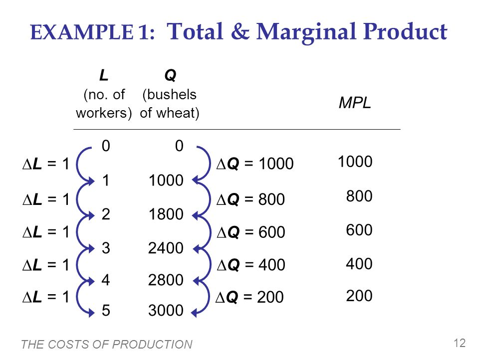 EXAMPLE 1: Total & Marginal Product