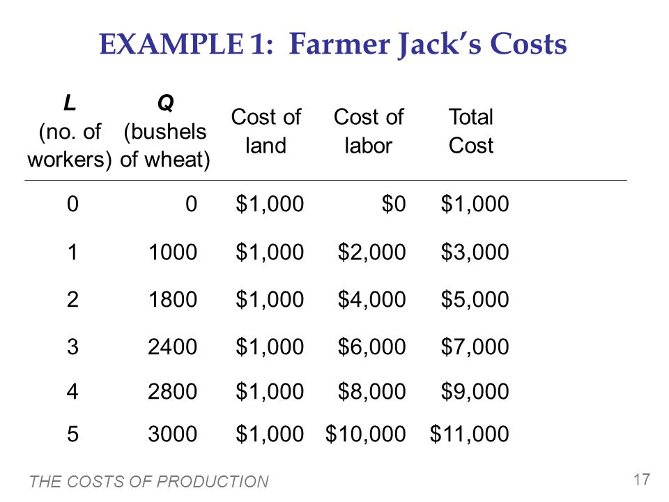EXAMPLE 1: Farmer Jack's Costs