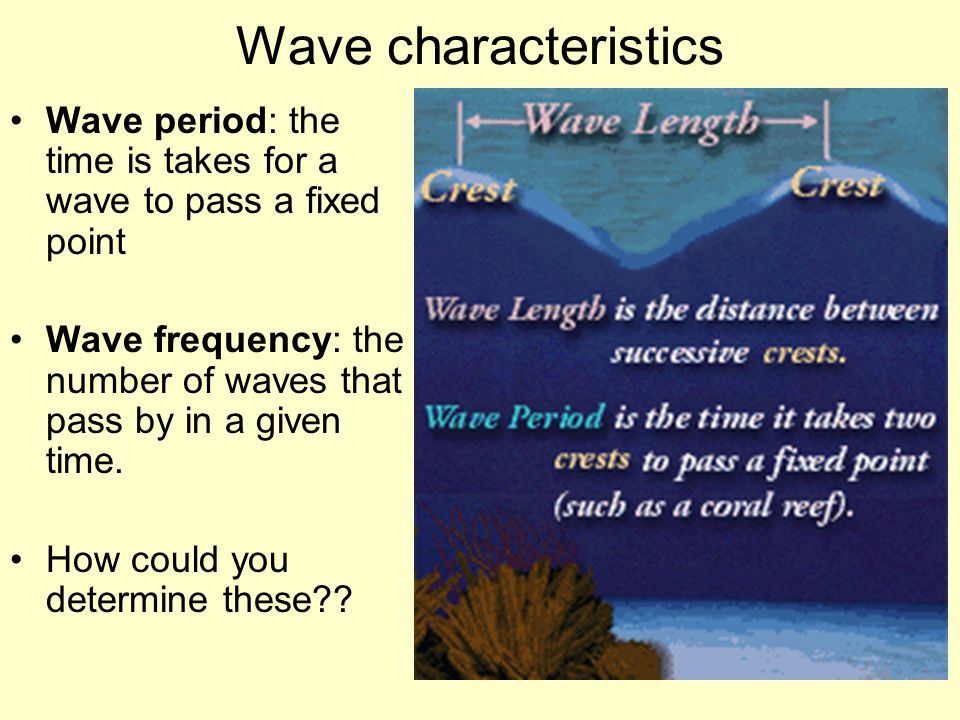 Wave characteristics Wave period: the time is takes for a wave to pass a fixed point.