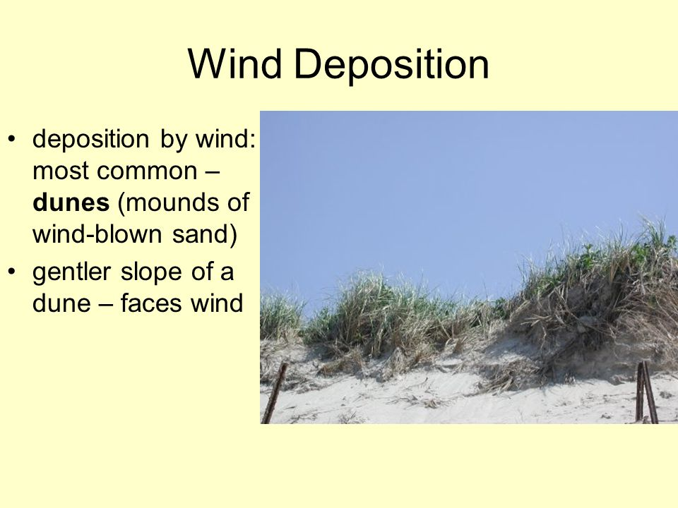Wind Deposition deposition by wind: most common – dunes (mounds of wind-blown sand) gentler slope of a dune – faces wind.