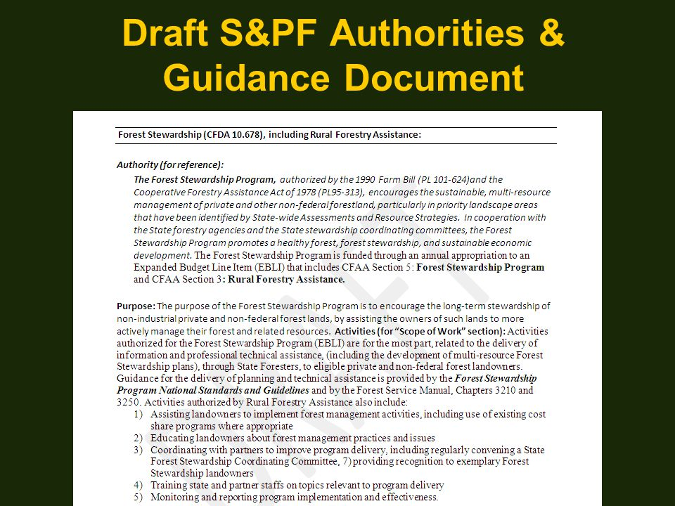 Draft S&PF Authorities & Guidance Document