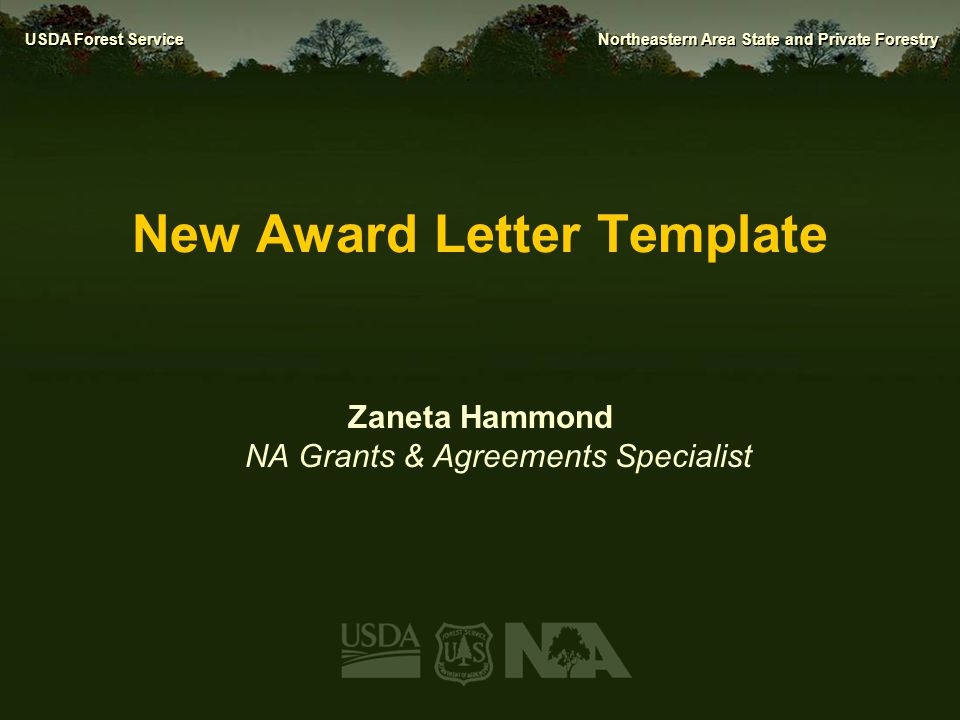 New Award Letter Template