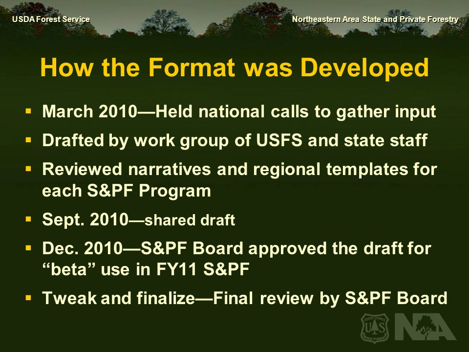 How the Format was Developed