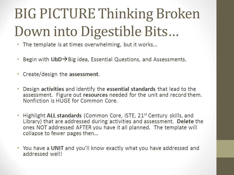 BIG PICTURE Thinking Broken Down into Digestible Bits…