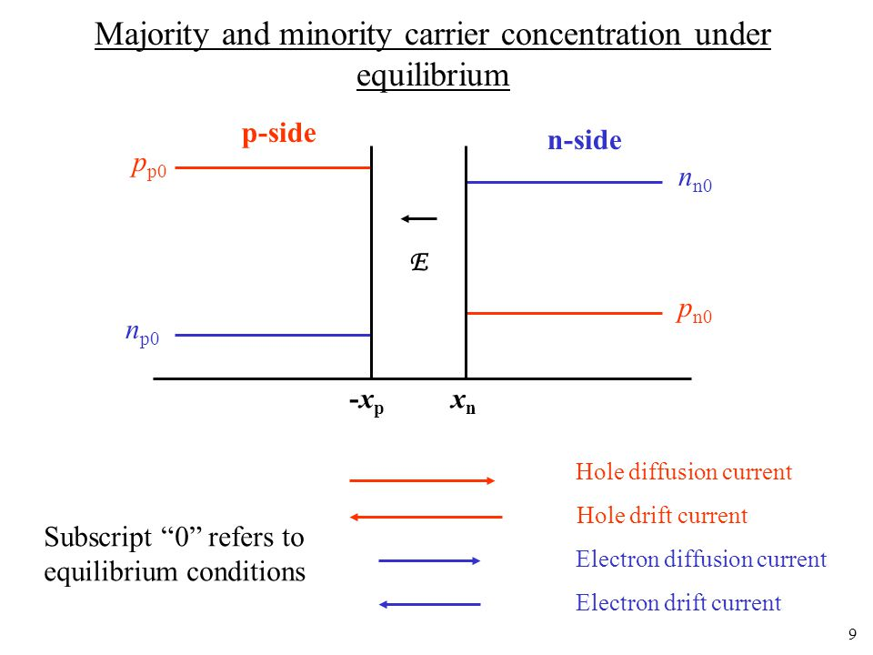Majority and minority carrier concentration under equilibrium