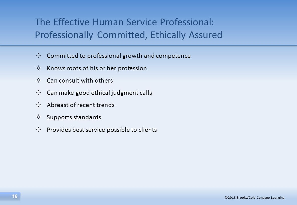 The Effective Human Service Professional: Professionally Committed, Ethically Assured