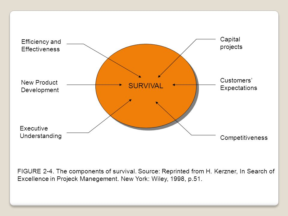 SURVIVAL Capital Efficiency and projects Effectiveness Customers'