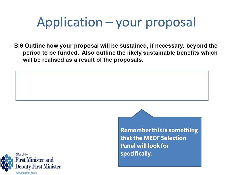 Application – your proposal