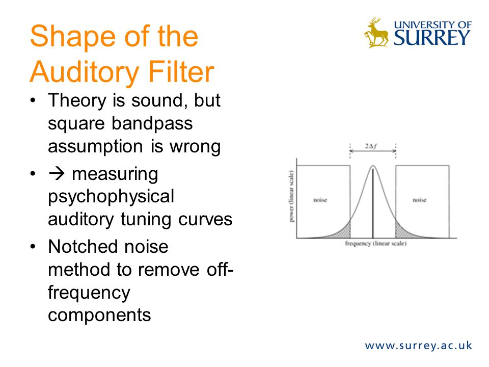 Shape of the Auditory Filter