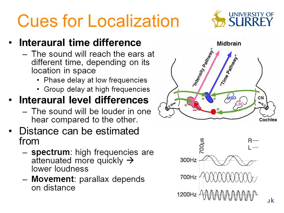 Cues for Localization Interaural time difference