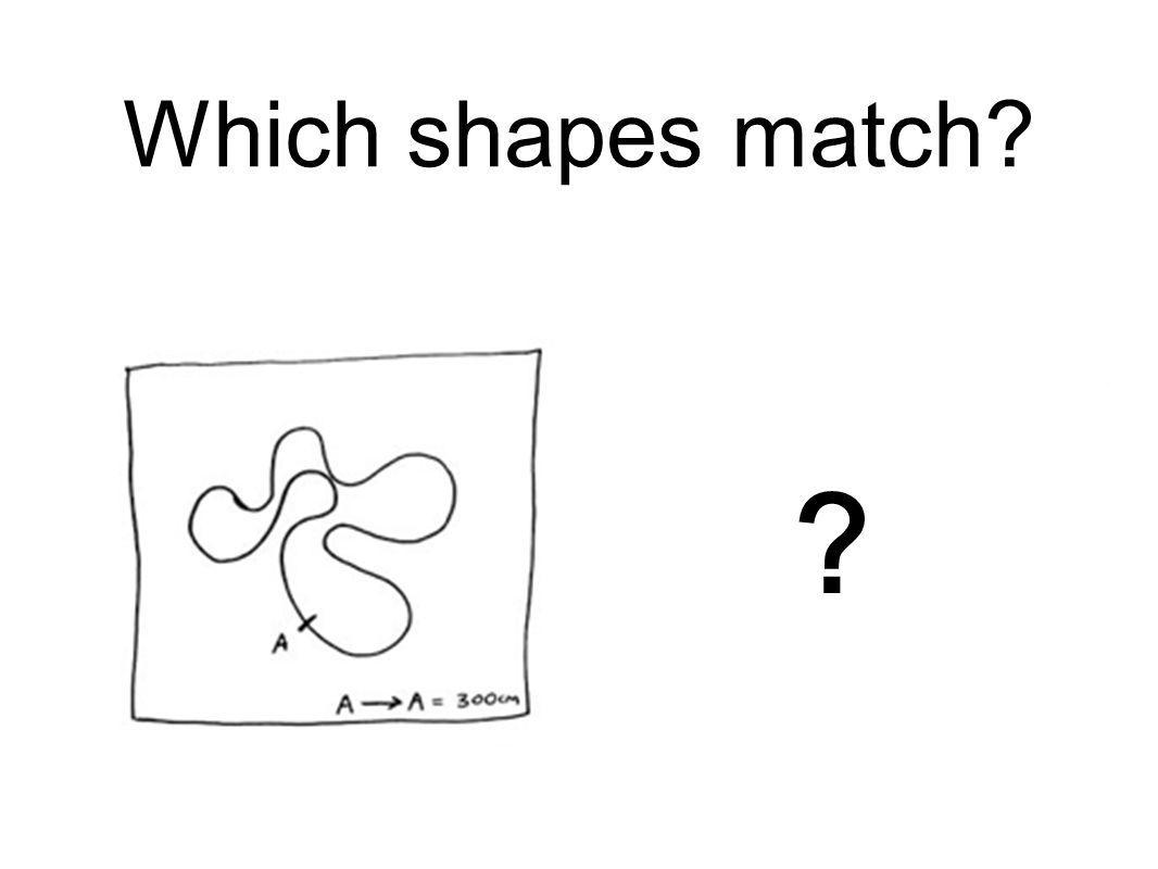 Which shapes match