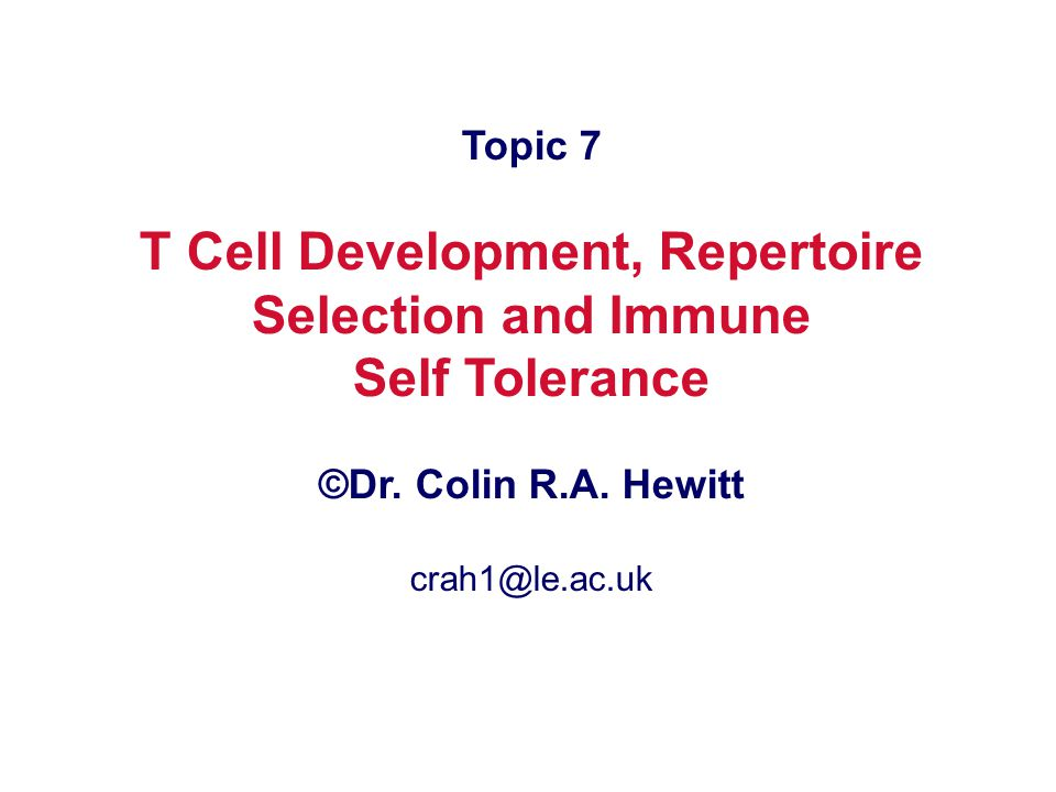 T Cell Development, Repertoire Selection and Immune