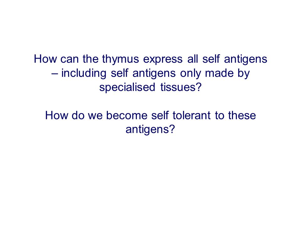 How do we become self tolerant to these antigens