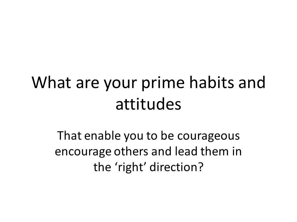 What are your prime habits and attitudes