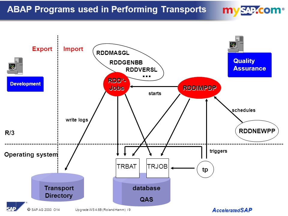 ABAP Programs used in Performing Transports