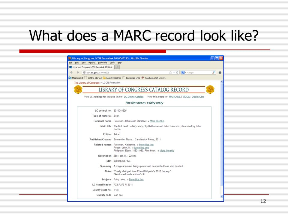What does a MARC record look like