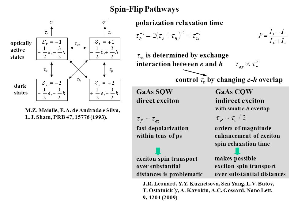 Spin-Flip Pathways polarization relaxation time