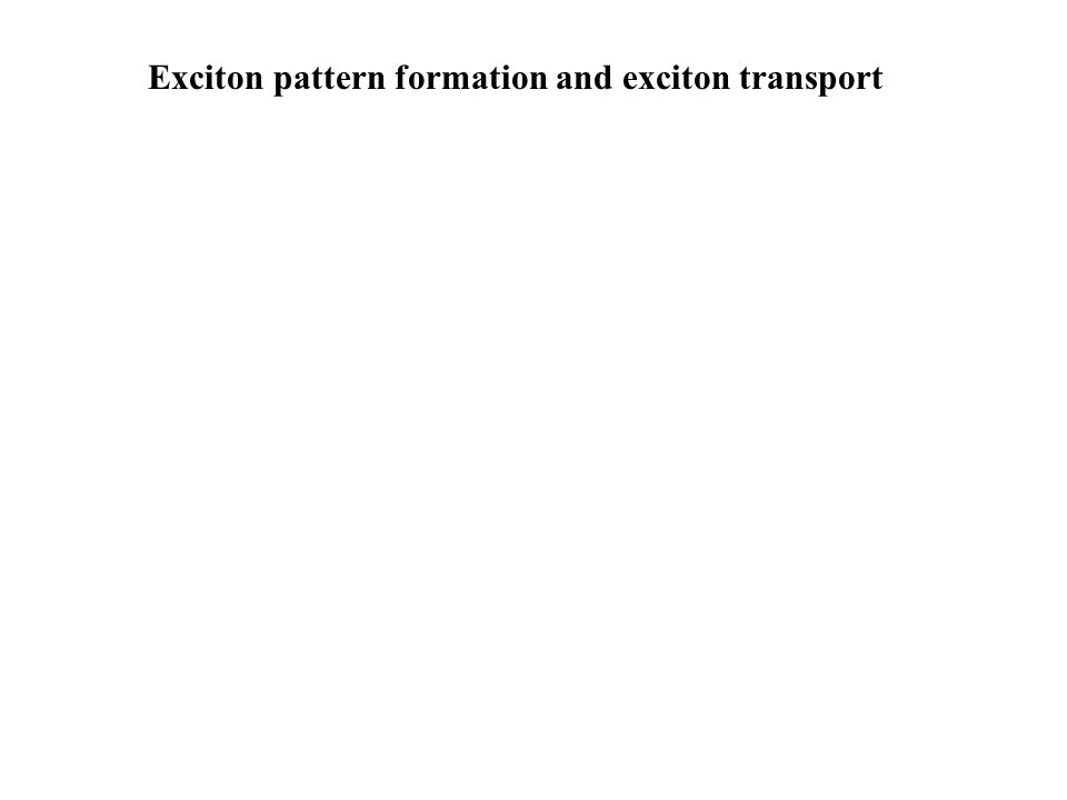 Exciton pattern formation and exciton transport