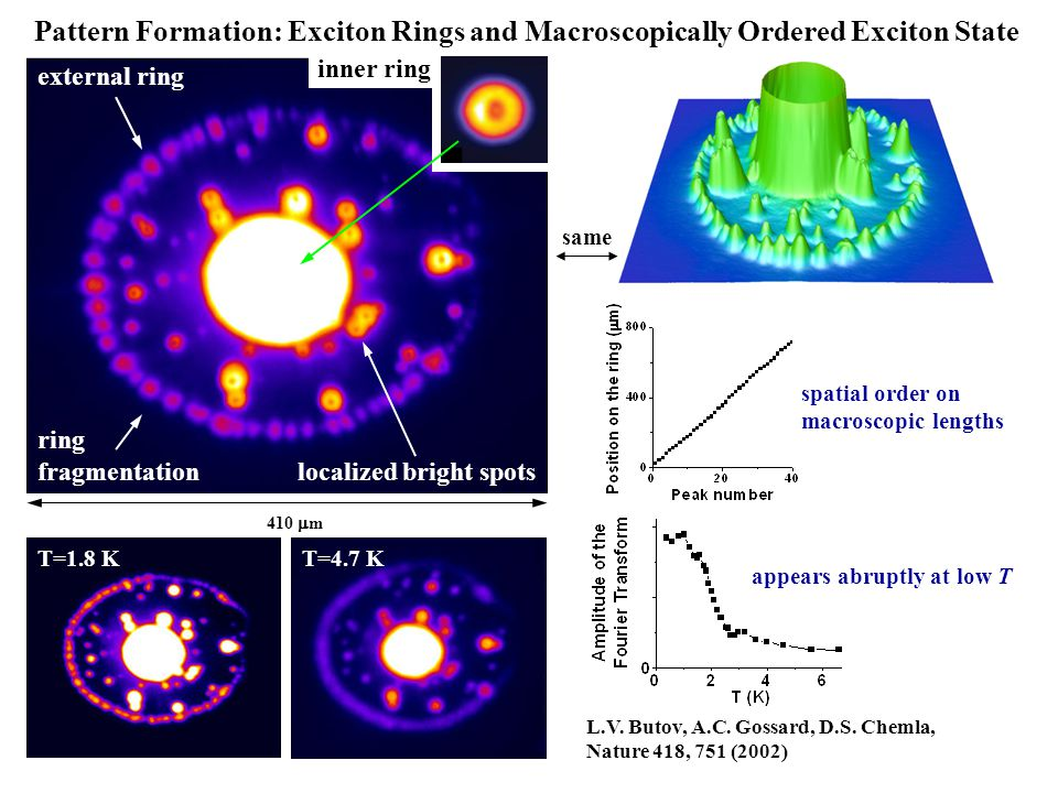 Pattern Formation: Exciton Rings and Macroscopically Ordered Exciton State