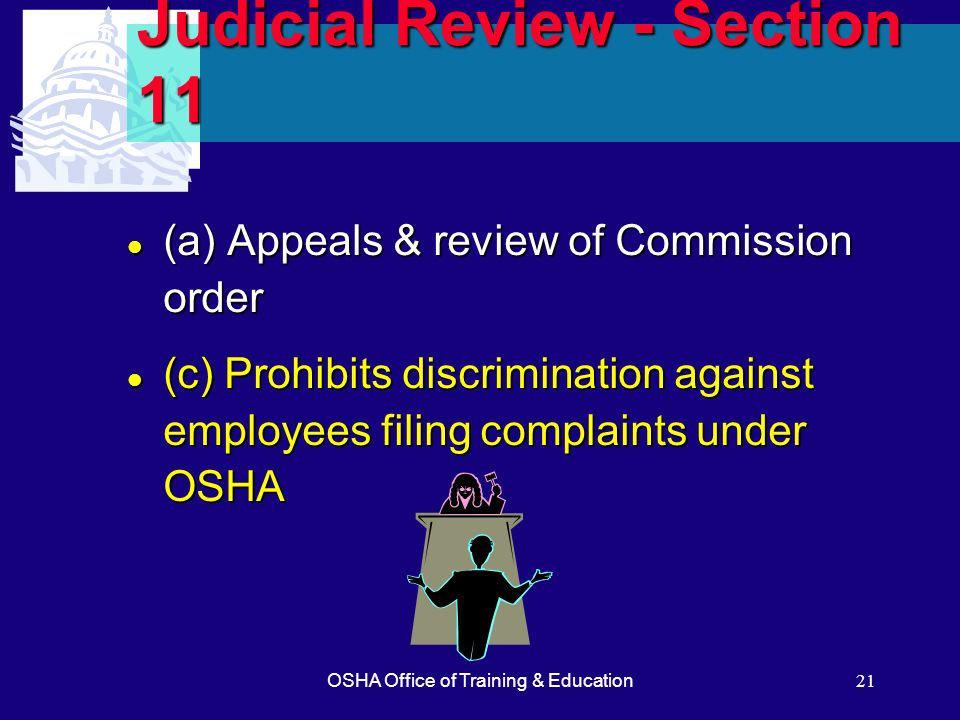 Judicial Review - Section 11