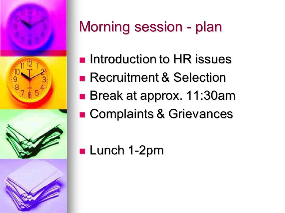 Morning session - plan Introduction to HR issues