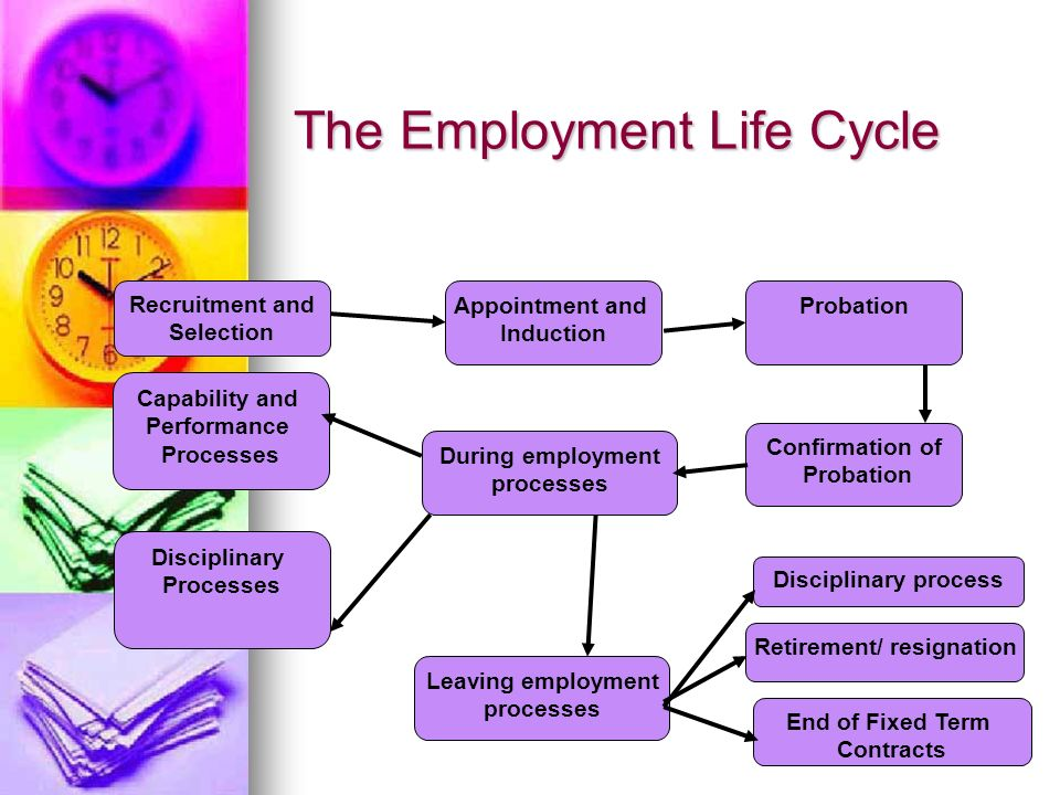 The Employment Life Cycle