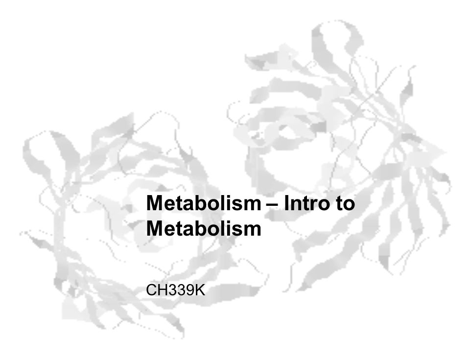 Metabolism – Intro to Metabolism