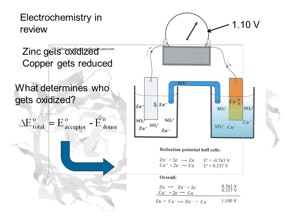 Electrochemistry in review