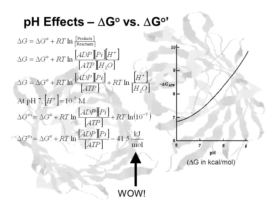 pH Effects – DGo vs. DGo' (DG in kcal/mol) WOW!