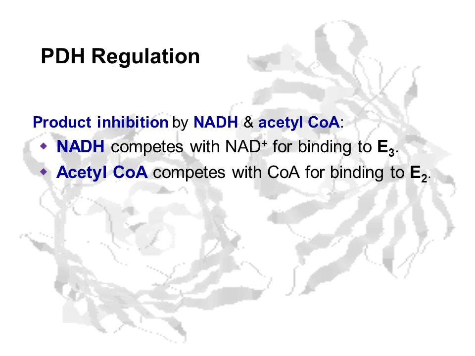 PDH Regulation NADH competes with NAD+ for binding to E3.