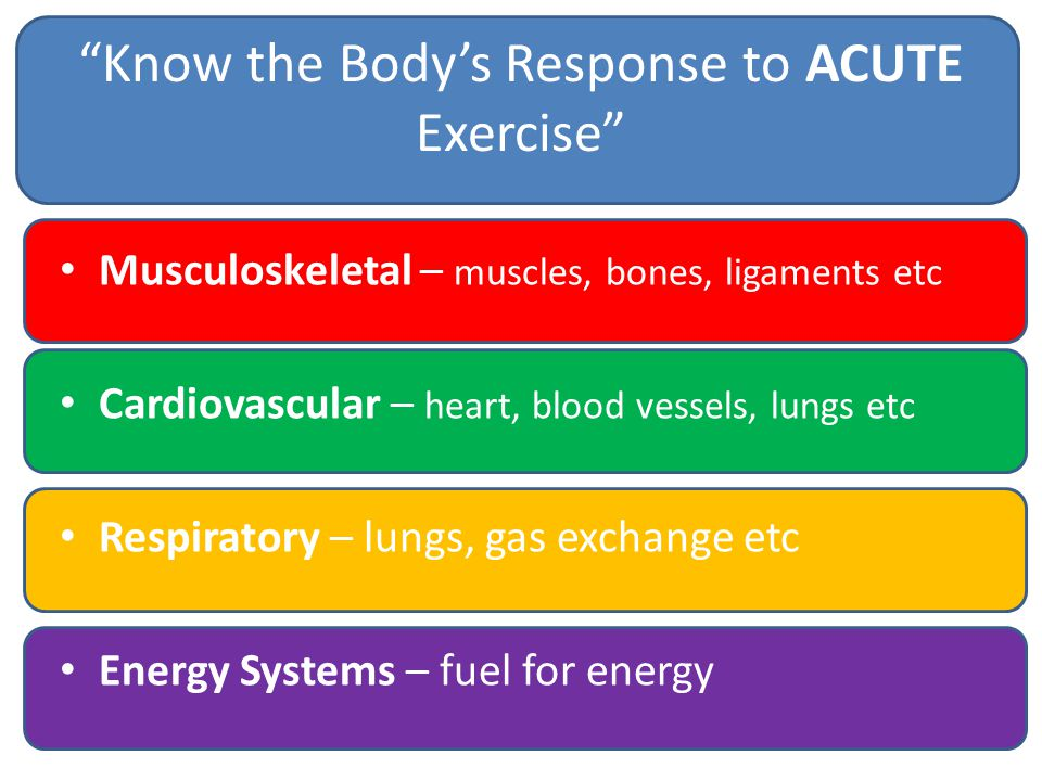 Know the Body's Response to ACUTE Exercise