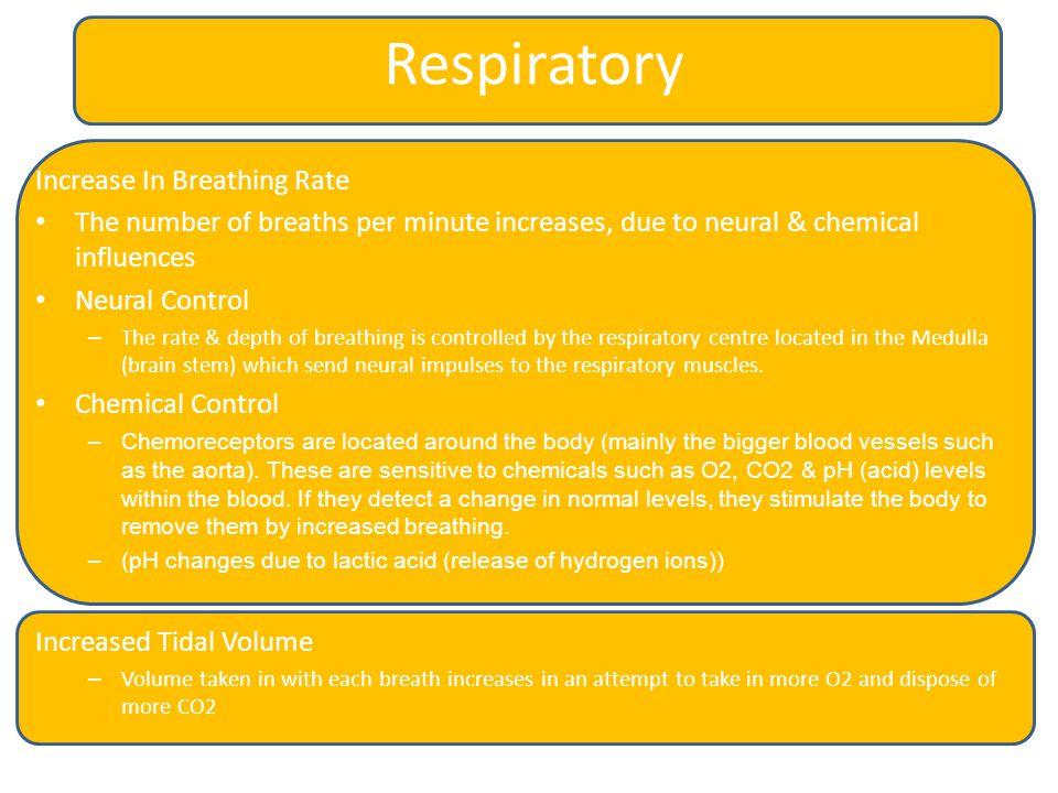 Respiratory Increase In Breathing Rate