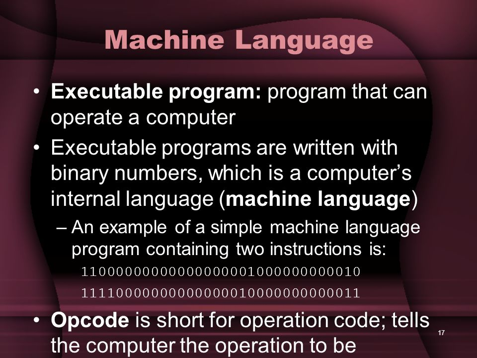 Machine Language Executable program: program that can operate a computer.