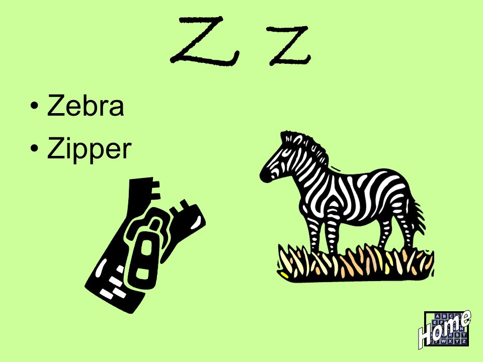 Z z Zebra Zipper Home