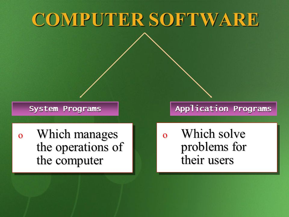 COMPUTER SOFTWARE Which manages the operations of the computer