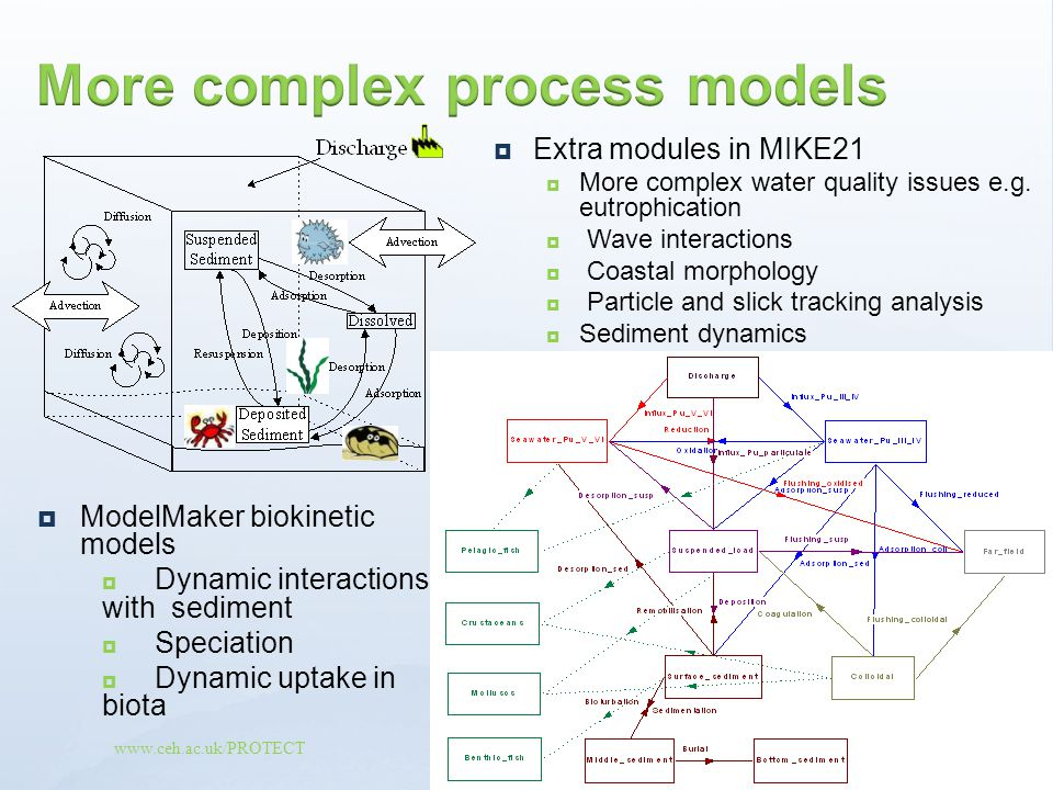 More complex process models