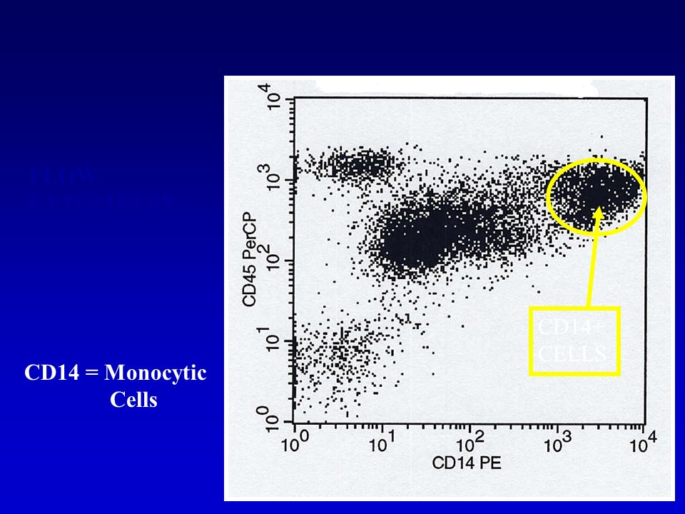 FLOW CYTOMETRY DATA PLOT CD14+ CELLS CD14 = Monocytic Cells